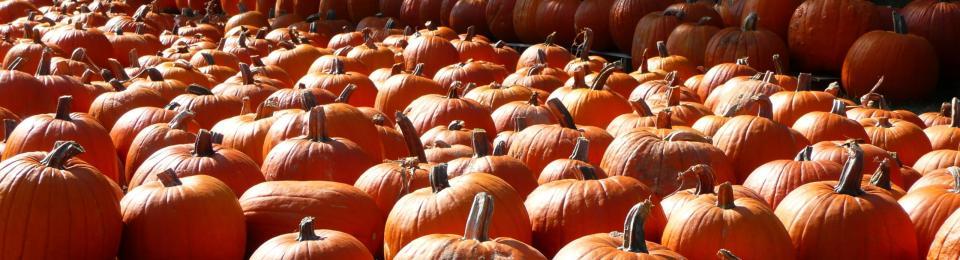 oktoberfest at reston town center