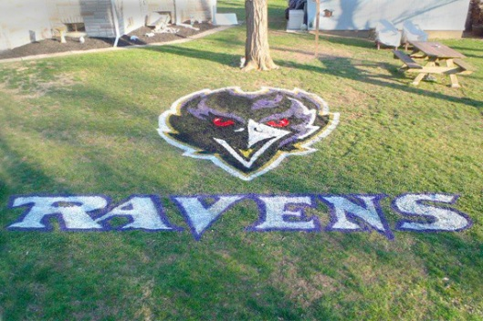 football-rooms-baltimore-ravens-yard_f46446ae2f9cf568f71b1d539ae6325a_3x2_jpg_570x380_q85